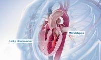 医学三维动画视频:细胞结构原理